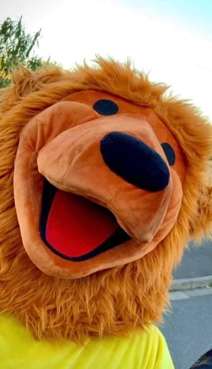 Alma bear face